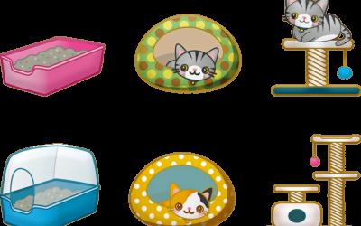 Chat qui mange sa litière : Pourquoi et que faire ?