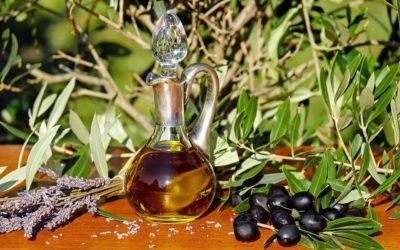 Donner de l'huile d'olive a son chat : Tout ce qu'il faut savoir